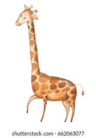 Watercolor illustration of funny cartoon giraffe drawn on paper
