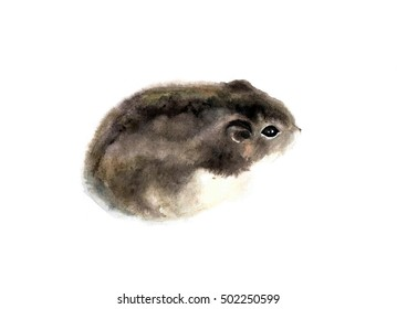 Watercolor illustration of a hamster in white background. Animal silhouette watercolor sketch. Wildlife art illustration. Vintage graphic for fabric, postcard, greeting card, book, poster, tee-shirt