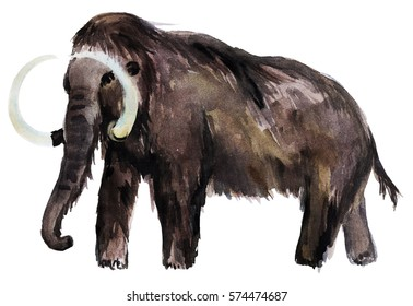 Watercolor illustration with mammoth.