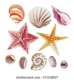 Watercolor illustration. Set of topical shell, starfish and pebble isolated on white background
