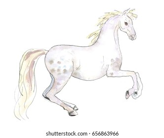 Watercolor Illustration of a White Horse