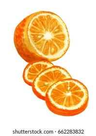 Watercolor image of sliced orange on white background