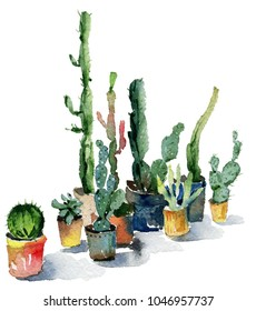 Watercolor isolated cactus set. Cactus painted in watercolor. Hand-drawn watercolor cactus plants.