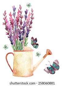 Watercolor lavender, watering can and butterflies. Hand painted illustration