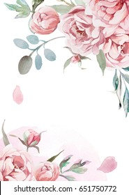 watercolor light pink, rose peonies with gray grass on white background for greetings card