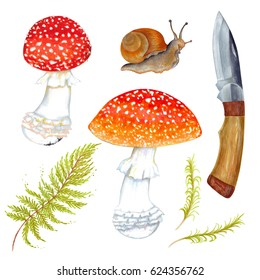 Watercolor marker set of Fly agaric mushroom with grass, snail and wooden knife. Isolated on white background.