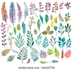 Watercolor natural collection, leaves, feathers and berries for beautiful design