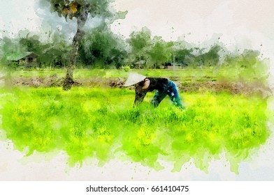 Watercolor paint art effect of digital photo of asian woman works at green rice farm.