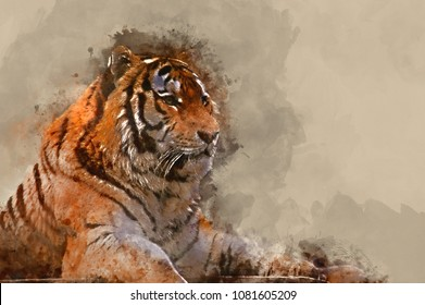 Watercolor painting of Beautiful tiger relaxing on warm day