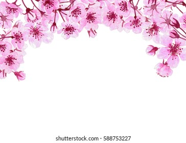 Watercolor painting of cherry blossom branches forming border on white background with space for text. Template design.