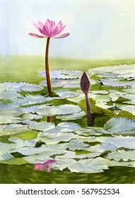 Watercolor painting of a pink water lily flower with bud and light blue pads.