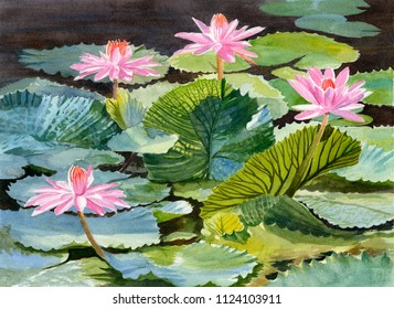 Watercolor painting pink waterlilies with textured pads
