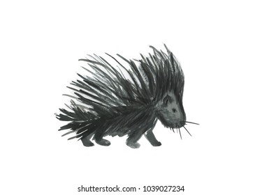 Watercolor painting porcupine