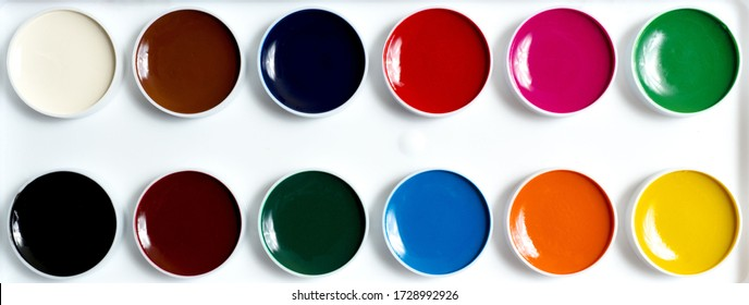 Watercolor paints 12 colors on a white background.