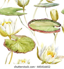 watercolor pattern of white lotus lily flower, botanical illustration, large green leaves