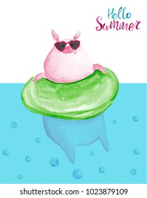 Watercolor pig relaxing on inflatable float ring. Hello Summer card