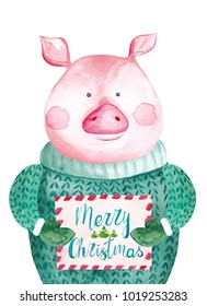 Watercolor Pig in sweater holding Christmas card. 2019 Chinese New Year of the Pig. Christmas greeting card