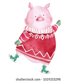 Watercolor Pig in sweater and skates. 2019 Chinese New Year of the Pig. Christmas greeting card