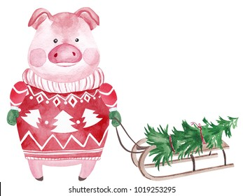 Watercolor Pig in sweater with sledge and Christmas tree. 2019 Chinese New Year of the Pig. Christmas greeting card