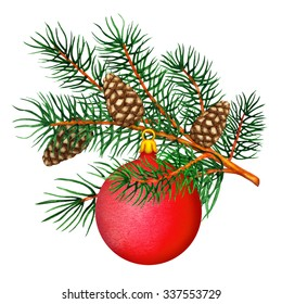 Watercolor pine tree branch, cones, red ball closeup isolated on white background. Hand painting on paper