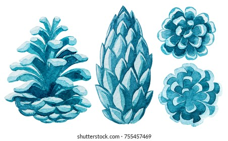 Watercolor pinecone. Christmas illustrations.