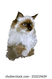 Watercolor portrait of cat illustration isolated on white background