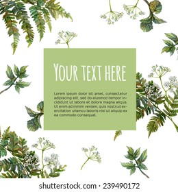 Watercolor print design. Hand drawn background with fern, wild aegopodium white flowers and leaves, green forest growth. Backdrop with place for text