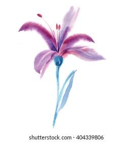 Watercolor Purple Lily