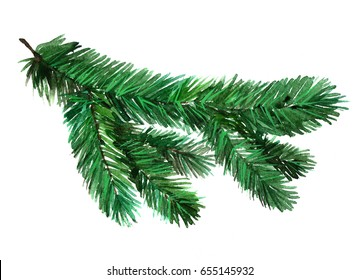 Watercolor realistic tree needles plant isolated on white background.