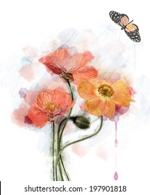 Watercolor Red Poppy Flowers Image.Digital Painting