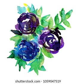 Watercolor roses element.
