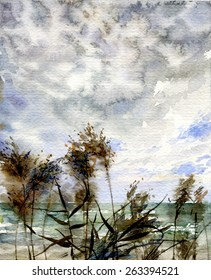watercolor sea landscape with reed