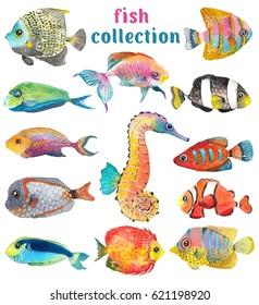 Watercolor Sea Life, fish, sea horse, beautiful collection for design