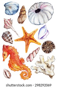 Watercolor sea ocean seahorse seashell coral reef polyp ammonit urchin set isolated