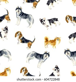 Watercolor seamless pattern with cute dogs. Beauty illustration the white background. Watercolor pets sketch
