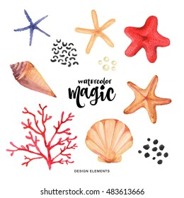 Watercolor set. Colorful collection with seashells, sea star, corals drawing watercolor. Summer design for invitation, wedding or greeting cards.
