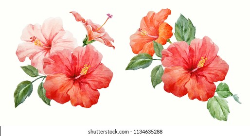 Watercolor set of illustrations, pink and red hibiscus flowers, tropical invitation, green leaves, invitation flower card
