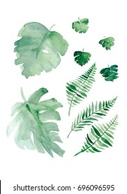 Watercolor set with tropical leaves