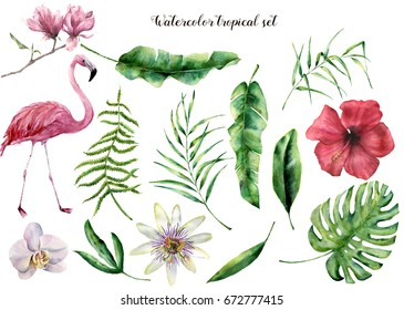 Watercolor set with tropical leaves and flamingo. Hand painted palm branch, fern and magnolia, monstera, orchid, hibiscus. Tropic plant isolated on white background. Botanical illustration. For design