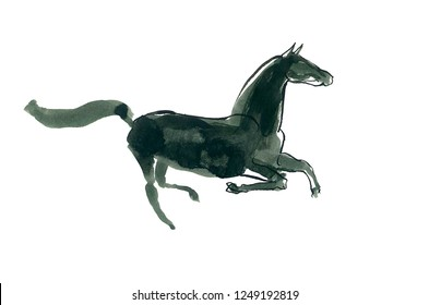 Watercolor sketch of the galloping horse.