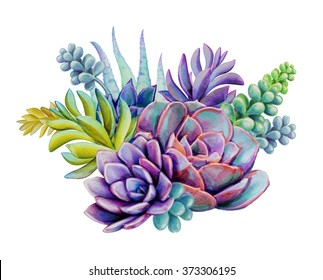 Watercolor Clip Art Flowers Stock Images Royalty Free