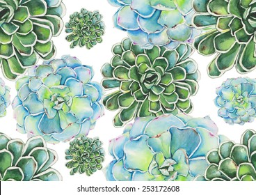 Watercolor succulents pattern on white background