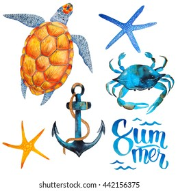 Watercolor summer nautical clip art - tortoise, anchor, sea stars, crab and lettering