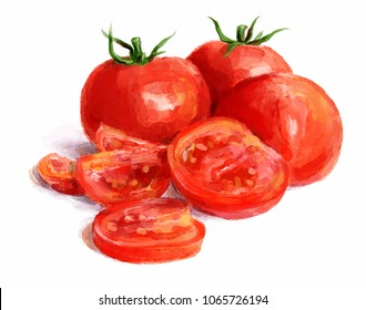 Watercolor tomatoes. Watercolor painting, still life, tomatoes on white background.