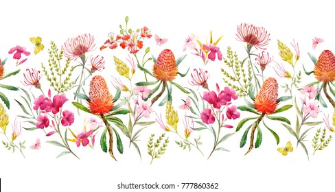 Watercolor tropical horizontal pattern , flowers, banksias orange, oleander pink, exotic Australian flowers, red flowers  Eremophila dichroantha.