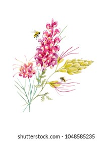 Watercolor tropical illustration  with exotic Australian flowers, red flowers Grevillea, set of isolated plants . flying bees, yellow tropical flower