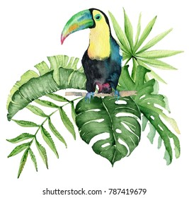 Watercolor tropical illustration with toucan birds, palm leaves.