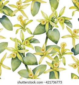Watercolor vanilla flowers. Hand painted floral seamless pattern