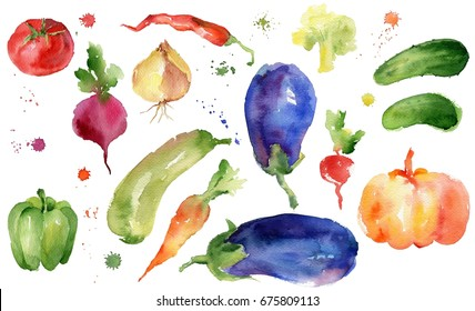 Watercolor vegetables.Watercolor isolated set. Hand drawn set with watercolor vegetables. Food.