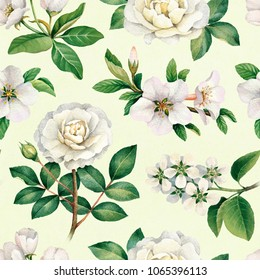 Watercolor white flowers. Seamless pattern